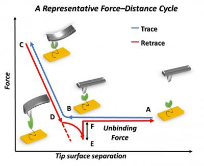 Force-Distance Cycle