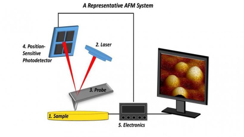 AFM Scheme